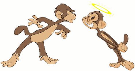 Monkey Caught Doing Pranks.
